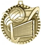 2 Volleyball Color Star Medal Awards